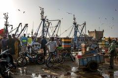 当渔夫在繁忙的港口卸载他们的从拖网渔船的抓住在索维拉在摩洛哥,外人观看 免版税库存照片