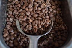 当背景是豆能关闭用完的咖啡颜色饱和的射击 免版税库存照片