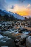 当金黄轻的秋天在水中 免版税库存照片