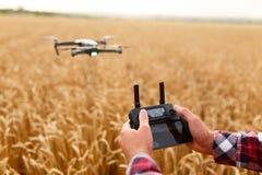 当直升机在背景时,飞行人拿着遥远的控制器用他的手 寄生虫在麦子的飞行员后盘旋 免版税库存照片