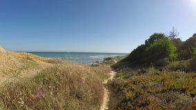 录影段落,沿在海滩Olhos de Agua的道路 股票视频