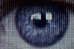 录影眼睛 库存图片