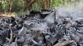 录影镜头、燃烧的垃圾和烟 强风上升灼烧的垃圾毒性烟入空气并且传播 影视素材