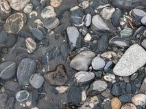 形成一个样式的湿岩石在河 免版税图库摄影