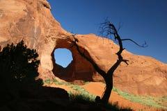 形成杜松纪念碑岩石结构树谷 库存照片