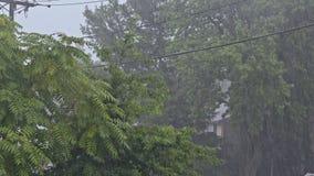 形成水的小河在路的非常强的夏天雨 股票录像
