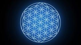 形成神圣的几何标志的生活花 库存例证