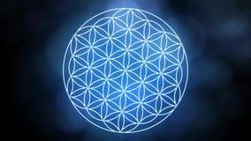 形成神圣的几何标志的生活花 向量例证