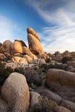 形成约书亚国家公园岩石结构树 免版税库存图片