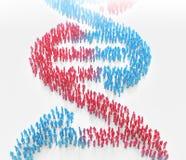 形成脱氧核糖核酸螺旋的微小的人民 库存图片