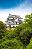 彦根Jo日本城堡保留树蓝天 库存照片