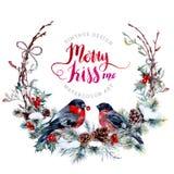 水彩与红腹灰雀的圣诞节花圈 向量例证