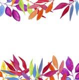 水彩五颜六色的手工制造热带和旅行背景 库存例证