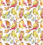 水彩五颜六色的滑稽的鸟无缝的重复样式 免版税库存照片