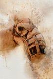 水彩伟大的骆驼特写 免版税库存照片