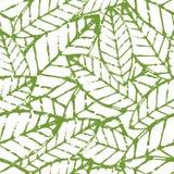 水彩传染媒介叶子无缝的样式 抽象难看的东西绿色a 库存图片