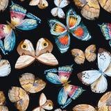 水彩传染媒介蝴蝶图案 免版税库存照片