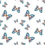 水彩传染媒介蝴蝶图案 库存照片
