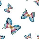 水彩传染媒介蝴蝶图案 免版税图库摄影