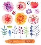 水彩传染媒介集合 逗人喜爱的花 免版税图库摄影