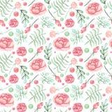 水彩叶子和桃红色玫瑰无缝的样式 免版税库存图片