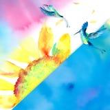 水彩向日葵蜂鸟背景 免版税库存图片