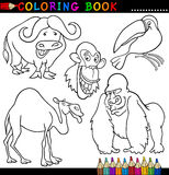彩图或页的动物 图库摄影