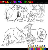 彩图或页的动物 库存照片