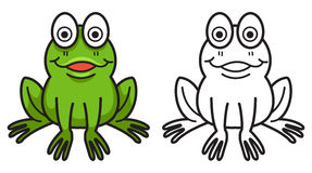 彩图的五颜六色和黑白青蛙 免版税库存照片