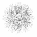 彩图的单色花卉手拉的背景 库存例证