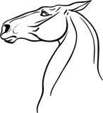 彩图的马头 免版税库存照片