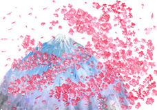 樱桃树和Fujiyama 免版税库存照片