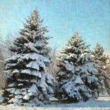 水彩圣诞节背景 库存图片