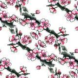 水彩墨水开花的樱桃、李子或者佐仓-无缝的样式 免版税库存照片