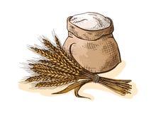 水彩大袋用整个面粉和耳朵麦子 向量例证