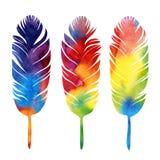 水彩套五颜六色的羽毛 免版税库存照片