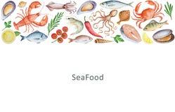 水彩套海鲜、菜和香料 免版税图库摄影