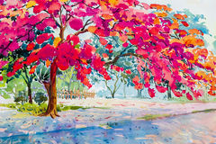 水彩山水画桃红色,孔雀花的橙色颜色 免版税图库摄影
