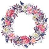 水彩开花的牡丹和淡紫色花圈 免版税库存图片