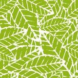 水彩手拉的传染媒介叶子无缝的样式 抽象gru 免版税库存图片