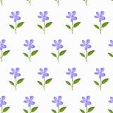 水彩无缝的样式-在a的蓝色花 库存图片