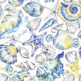 水彩无缝的贝壳样式 免版税库存图片