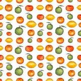 水彩明亮的新鲜的柑橘无缝的重复样式 库存图片