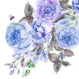 水彩春天花束用开花的樱桃和英国玫瑰 免版税库存图片