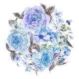 水彩春天花束用开花的樱桃和英国玫瑰 库存照片