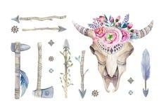 水彩有花和羽毛装饰的母牛头骨 Boho 库存图片