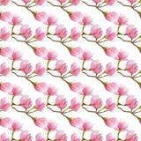 水彩木兰开花纹理 水彩手拉的无缝的样式 包裹的,织品,纺织品春天设计 免版税库存照片