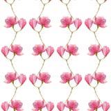 水彩木兰无缝的样式,印刷品的,包装纸春天设计 免版税库存图片