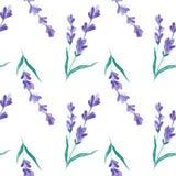 水彩样式用淡紫色 手绘画 织品的无缝的样式、纸和其他打印和网项目 免版税库存图片