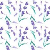 水彩样式用淡紫色 手绘画 织品的无缝的样式、纸和其他打印和网项目 免版税库存照片